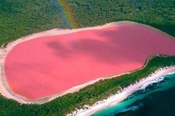 Noticia de un lago rosa en Australia